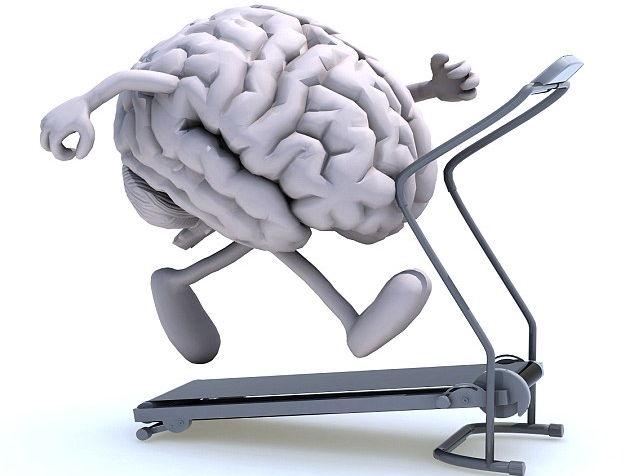Brain Trainer Exercises