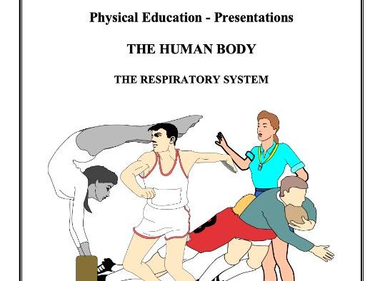 The Respiratory System Work Booklet - GCSE PE - great for revision!