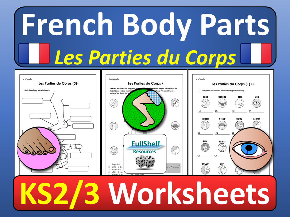 French Body Parts Worksheets