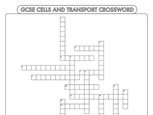 A Level Biology Crossword Pack On The Lungs And Heart