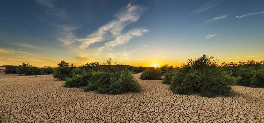 GCSE 9-1; Climate change - The Big Dry, Australia El Nino drought case study