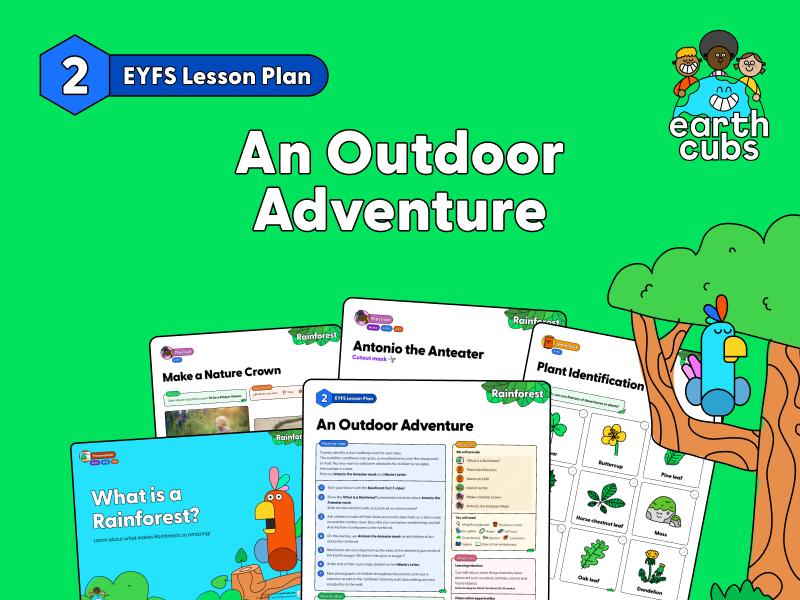 An Outdoor Adventure in the Rainforest: EYFS Lesson Plan
