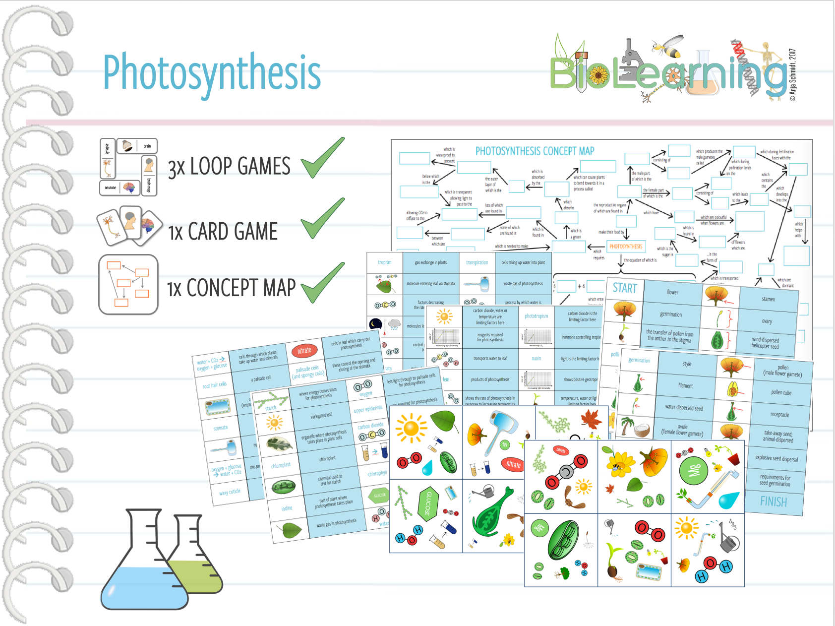 concept map for photosynthesis Photosynthesis concept map prezi, photosynthesis consists of light reactions calvin cycle occurs in chloroplasts consists of grana stroma which are stacks of.
