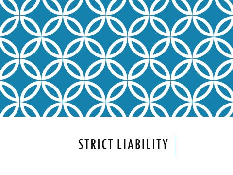 Criminal Law - Strict Liability Test