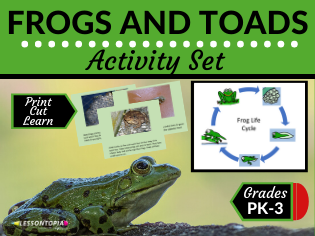 Frog and Toad Activity Set (Home Learning, Distance Learning)