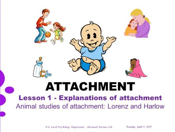 Powerpoint - Attachment - Lesson 1  - Animal studies of attachment Lorenz and Harlow