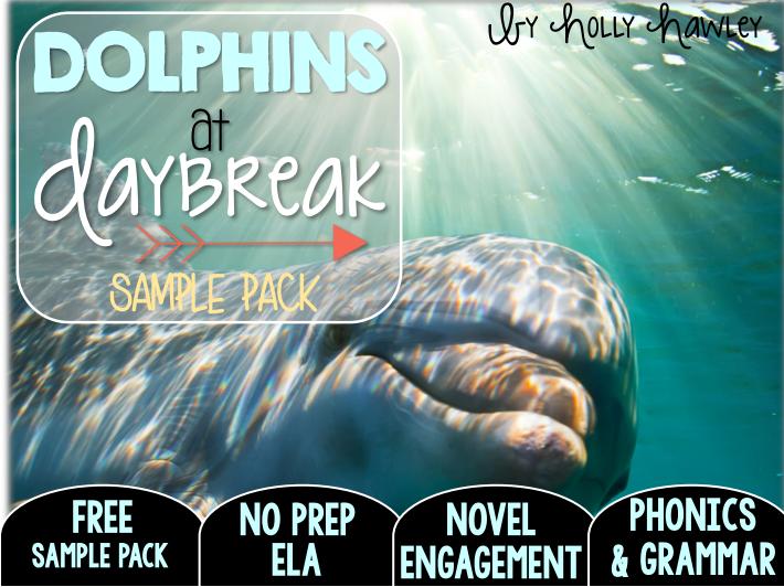 Dolphins at Daybreak NO PREP (ELA) SAMPLE