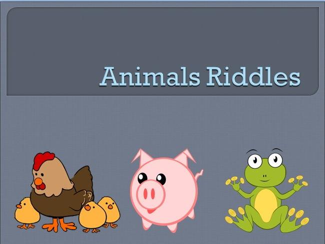Animal riddles | Teaching Resources