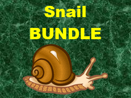 Schnecke (Snail in German) Verbs Bundle