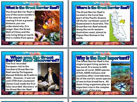 The Great Barrier Reef Display Pack