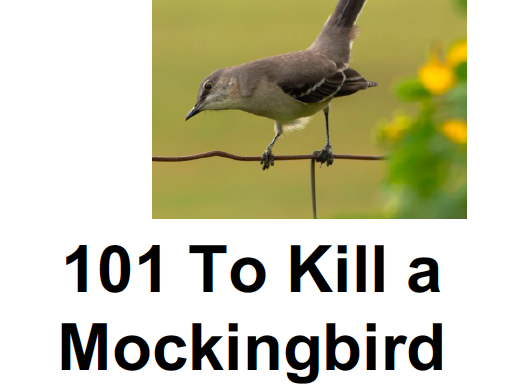 101 To Kill a Mockingbird Questions