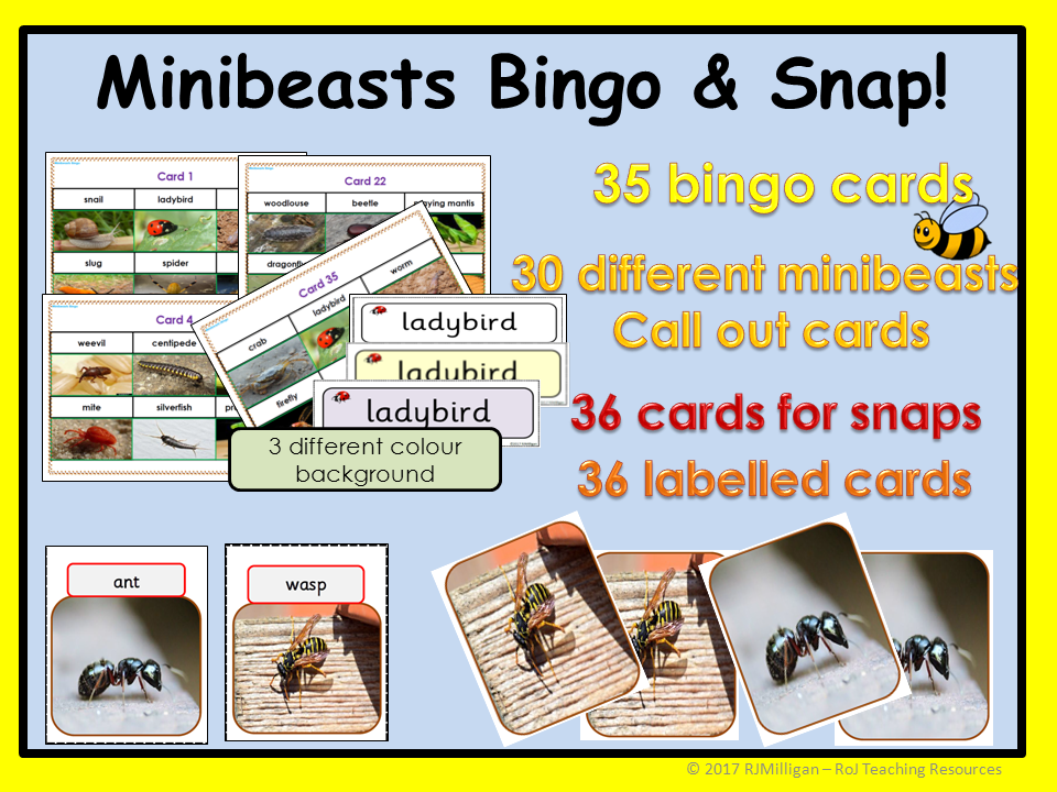 Minibeasts: Bingo, Snap! and Matching Card Games, Picture cards