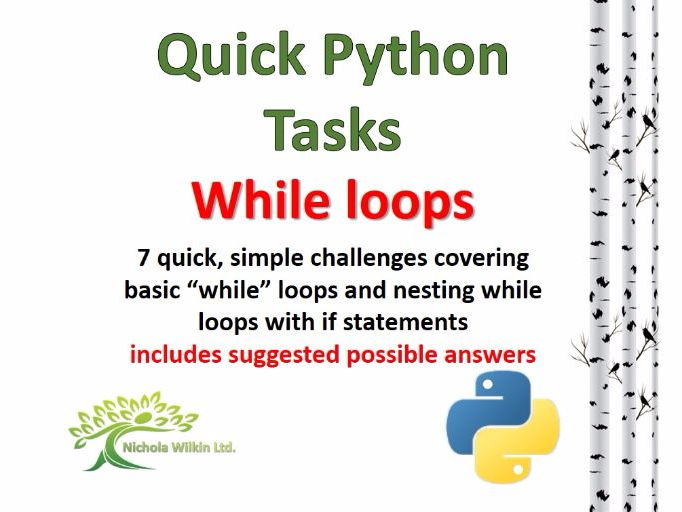 While Loops (Quick Python Programming Challenges)