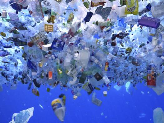 Lesson Plan Plastics in the Ocean Interview