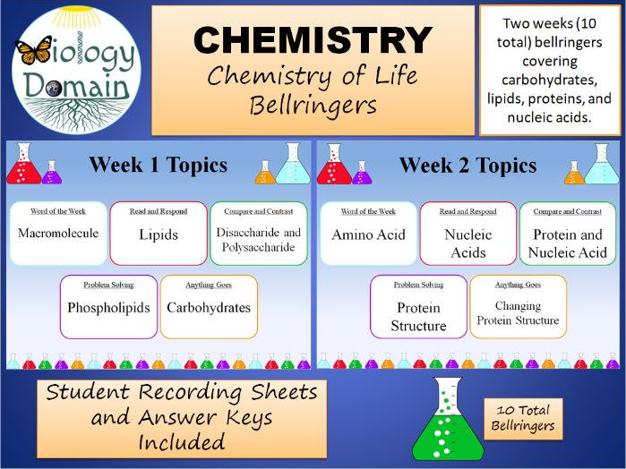 Two Weeks of Chemistry of Life Bellringers Warm Ups with Answer Key