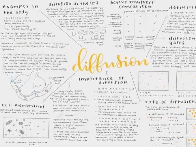 GCSE Biology Diffusion Mindmap - Triple science content AQA