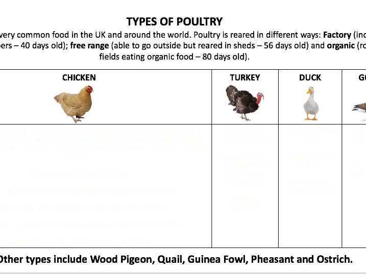 Types of Poultry Food & Nutrition Activity