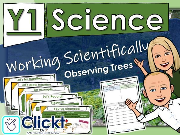 Year 1 Science: Plants: Working Scientifically - Observing Trees