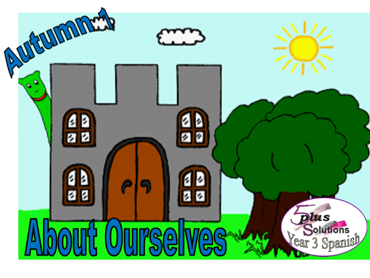 Primary Spanish CLASSROOM DISPLAY/FLASHCARDS: Year 3 About Ourselves