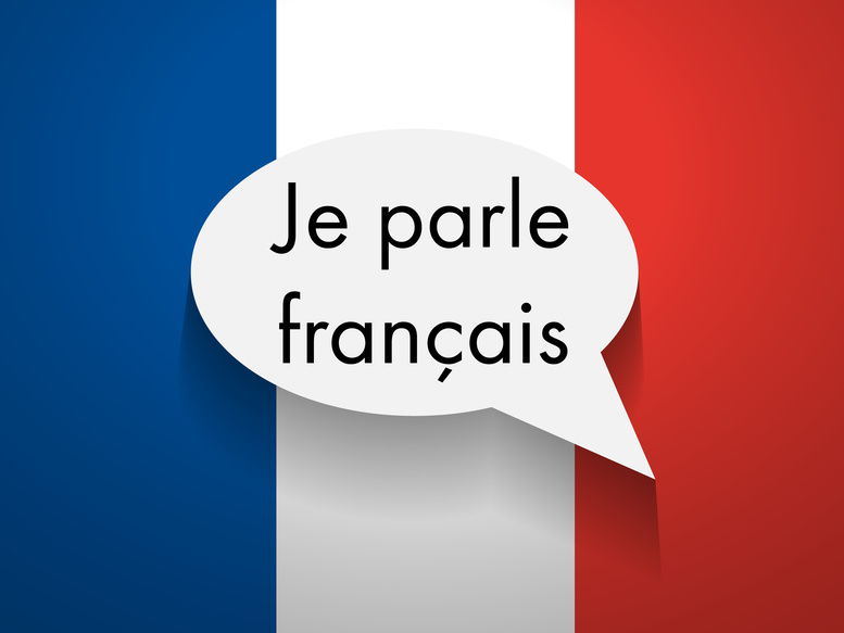 French describe yourself, family members, opinions about family, greetings, games, home town, name, the family, directions, months of the year
