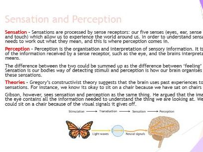 AQA GCSE Psychology - Perception Revision Booklet