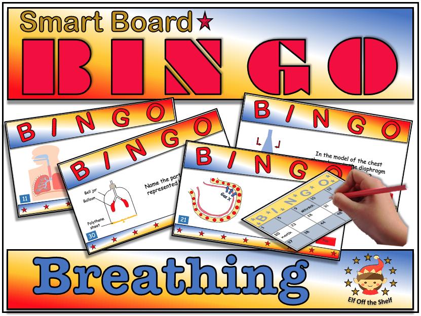 Breathing and the Respiratory System - Smart Board Bingo KS3