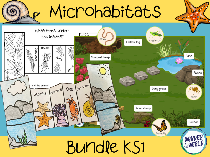 Microhabitats activity bundle KS1