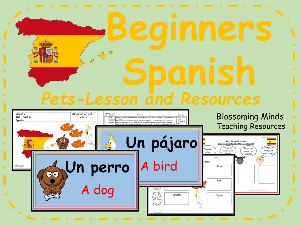 Spanish lesson and resources - KS2 - Pets