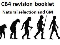 CB4 revision booklet