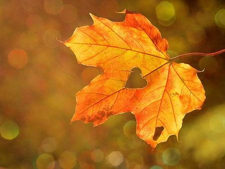 Autumn Bundle - Writing About Autumn