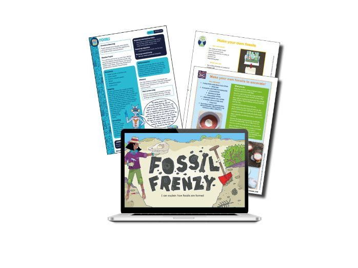 Yr3 Science lesson on fossils