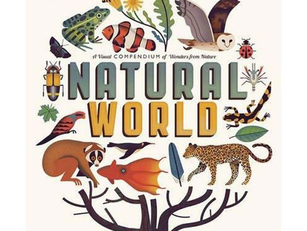 Year 3 - English Unit (Plans and Resources) - 10 Weeks - Our Natural World  Theme (Autumn Term) | Teaching Resources
