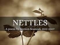 Edexcel Relationship Poetry: Nettles by Vernon Scannell
