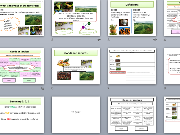 The value of tropical rainforest - goods and services (AQA The Living World)