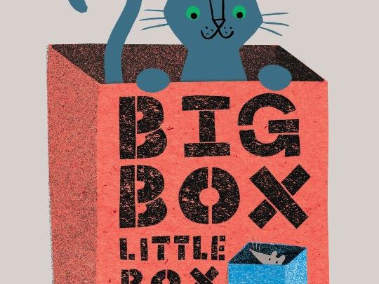 Big Box Little Box Teaching Ideas for the Klaus Flugge Prize Shortlist 2018