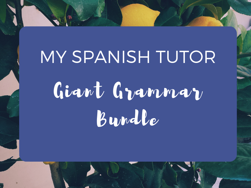 Giant Grammar Bundle - 22 Worksheets