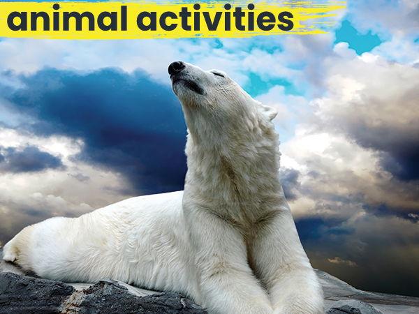 National Polar Bear Day - Word Scramble