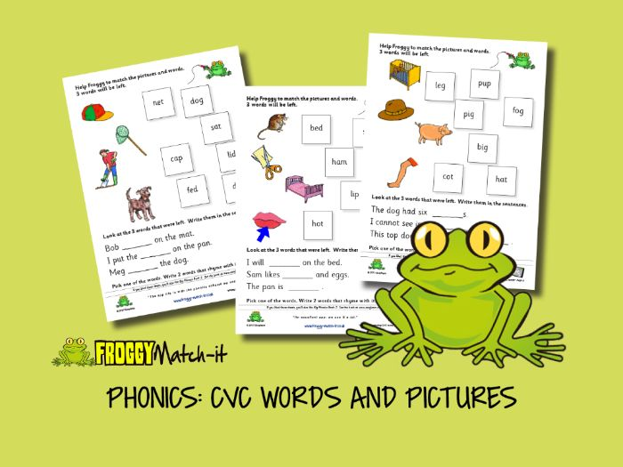 PHONICS: CVC WORDS AND PICTURES