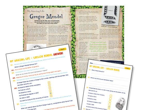 Year 6 Historical Scientist  George Mendel