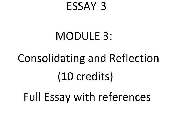 Essay 3 - Consolidating and Reflection (10 credits)