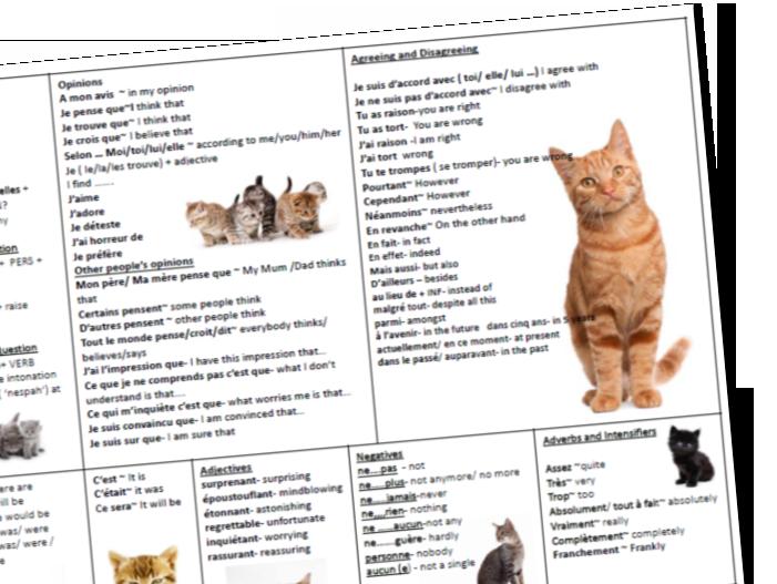 French GCSE Speaking Cat Mat