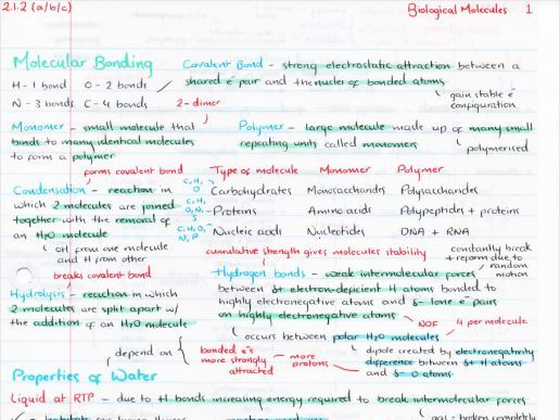 OCR A Level Biology Biological Molecules Revision Poster