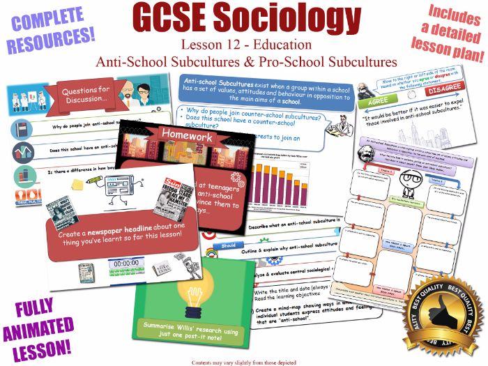 Anti-School Subcultures - Sociology of Education L12/20 [ AQA GCSE Sociology - 8192] Counter School