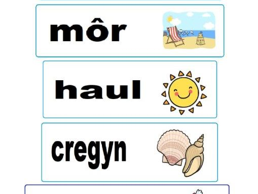 Welsh Resource cards for the beach