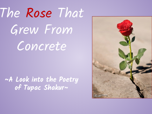 The Rose that Grew from Concrete by Tupac Shakur (ESL Suitable!)