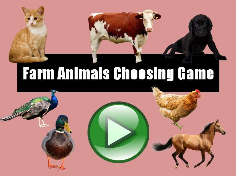Farm Animals Choosing Game