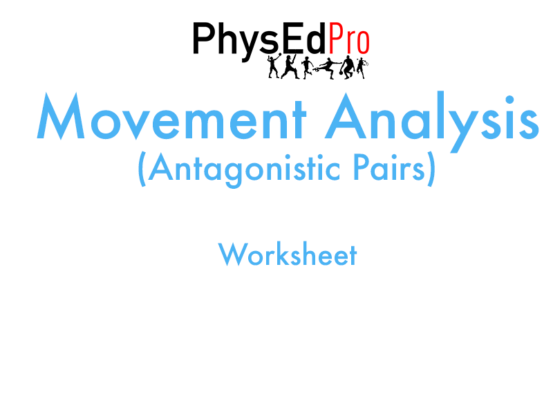 GCSE PE – Movement Analysis - Antagonistic Pairs Worksheet or Homework Activity– IGCSE