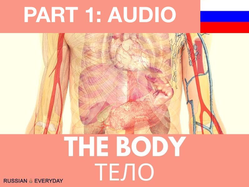 Russian Words-The Body: AUDIO and eBOOK:PART ONE