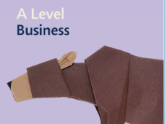 Edexcel A Level Business practice paper collection