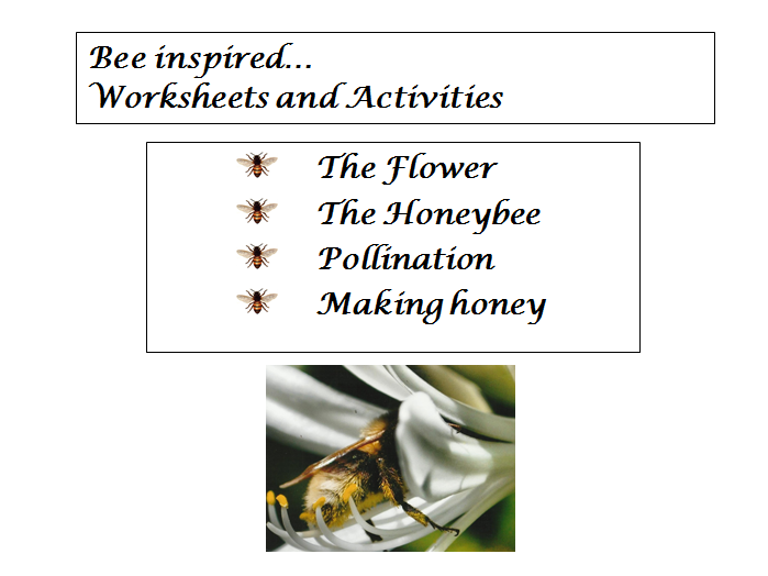 Bee Inspired. Bees, flowers, pollination and honey. A Comprehensive unit of work.